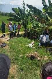 Encuentran hombre muerto en finca de arroz en Maizal